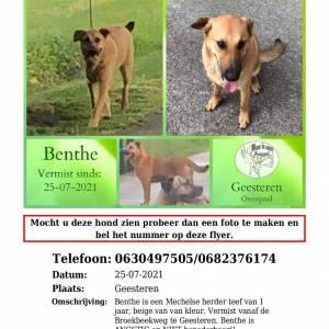 Wie heeft boerderijhond Benthe gezien?